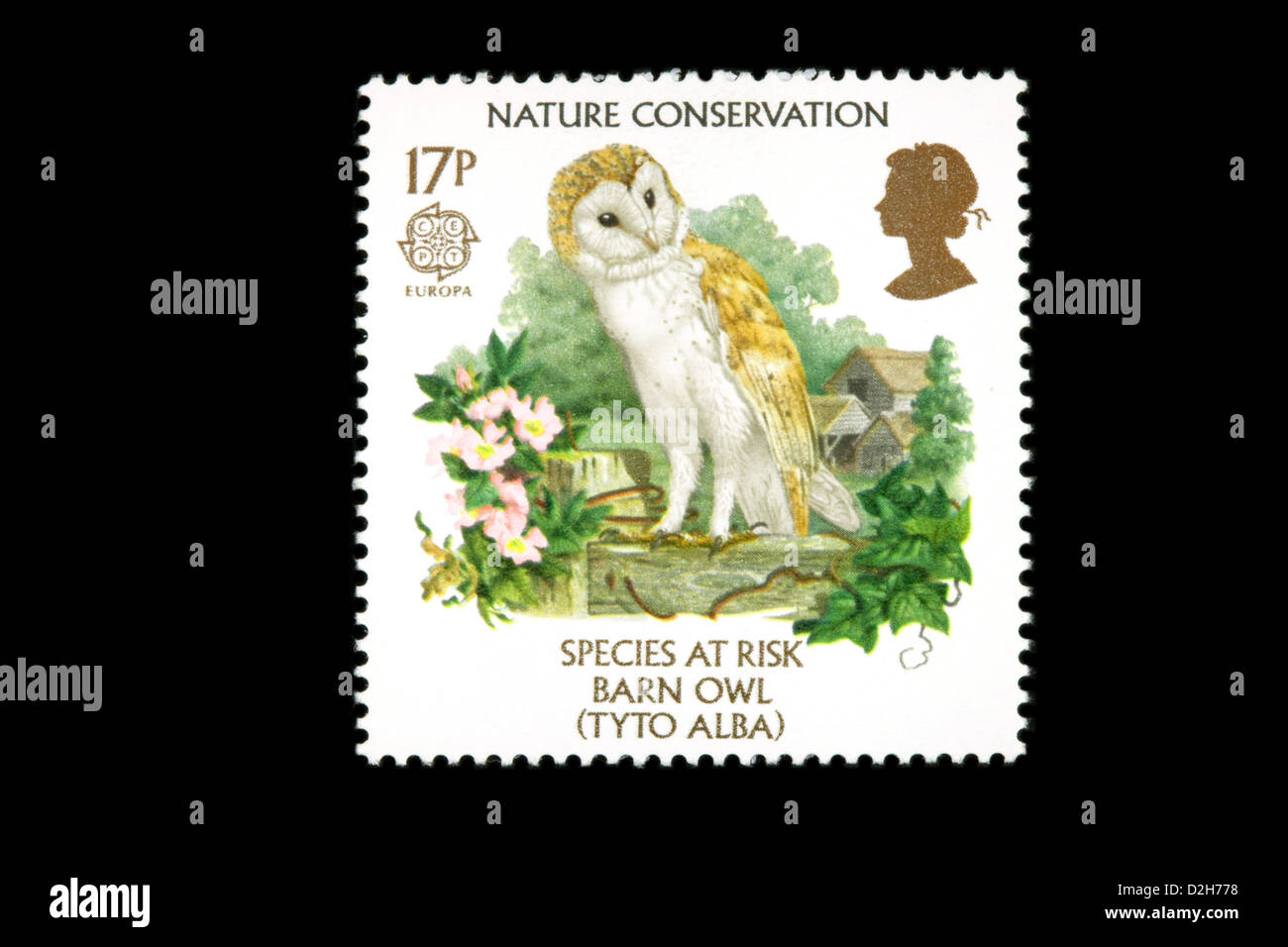 The 1986 Europa British Stamp stamps issue on Nature Conservation featuring a barn owl, UK - Stock Image