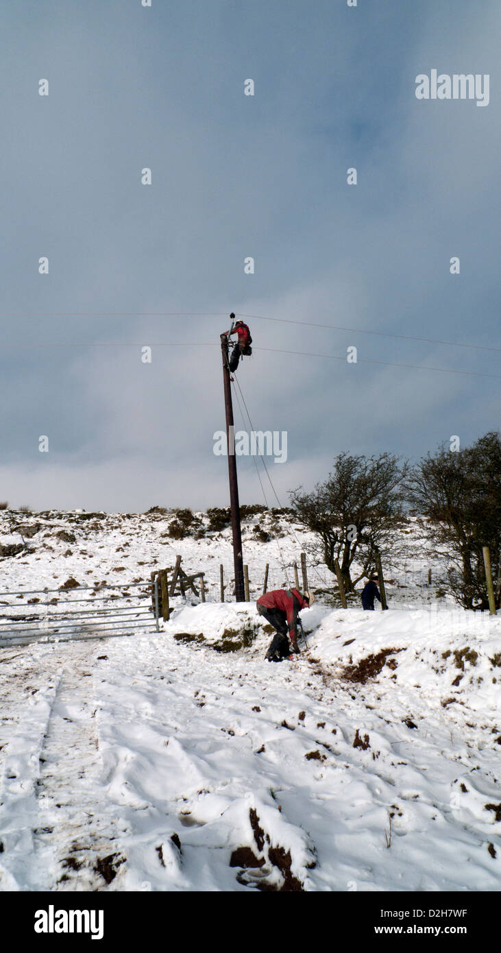 Western Power Distribution power worker connecting electricity cables on to a pole in winter in West Wales UK   - Stock Image