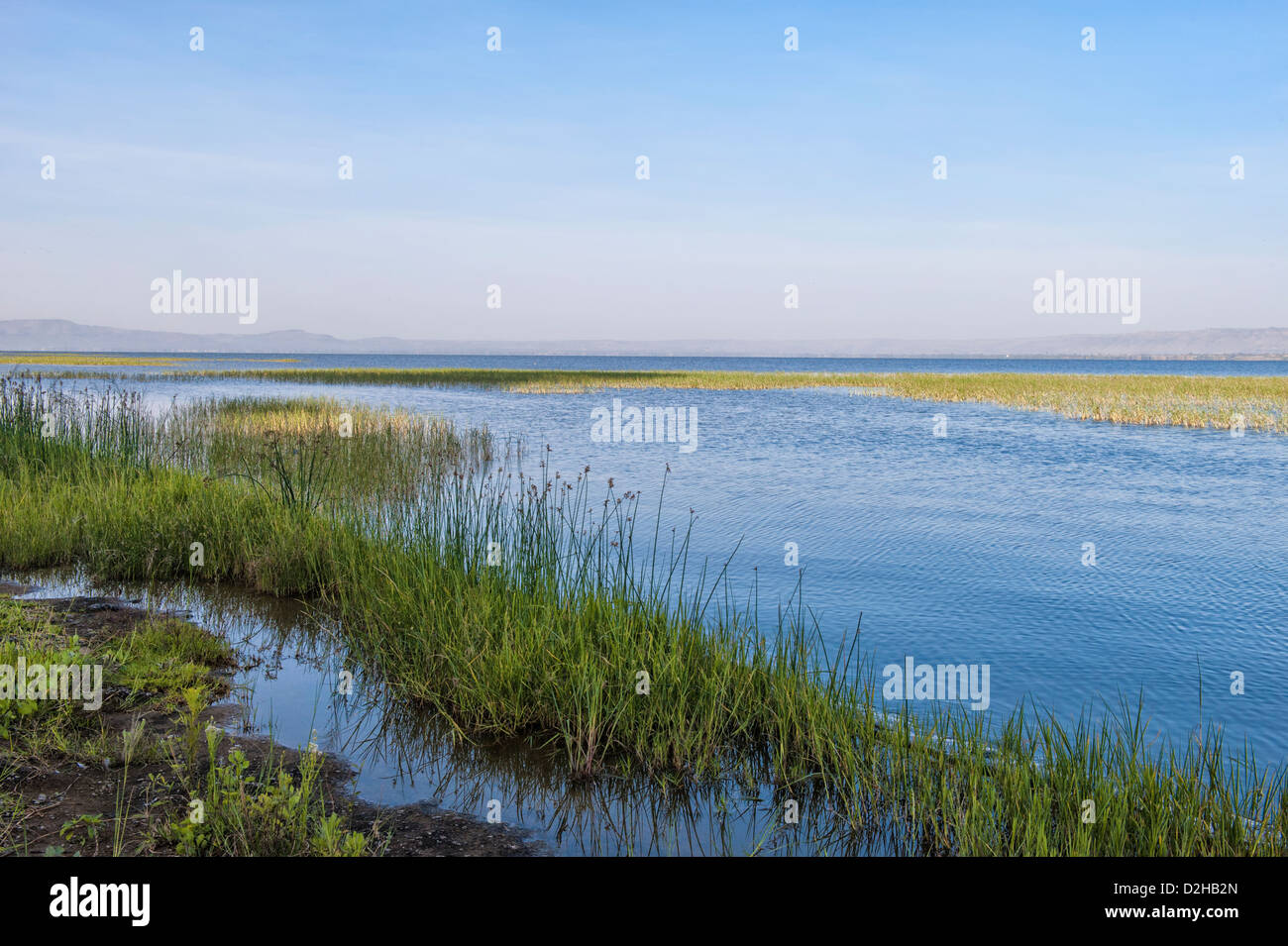 Awasa lake, Ethiopia - Stock Image