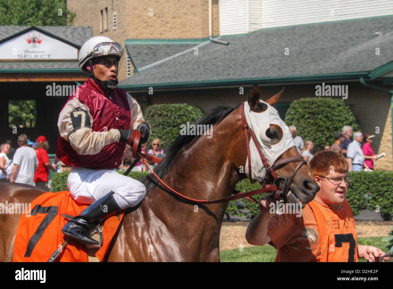 In the Paddock. Horse Racing at River Downs track, Cincinnati, Ohio, USA. - Stock Image