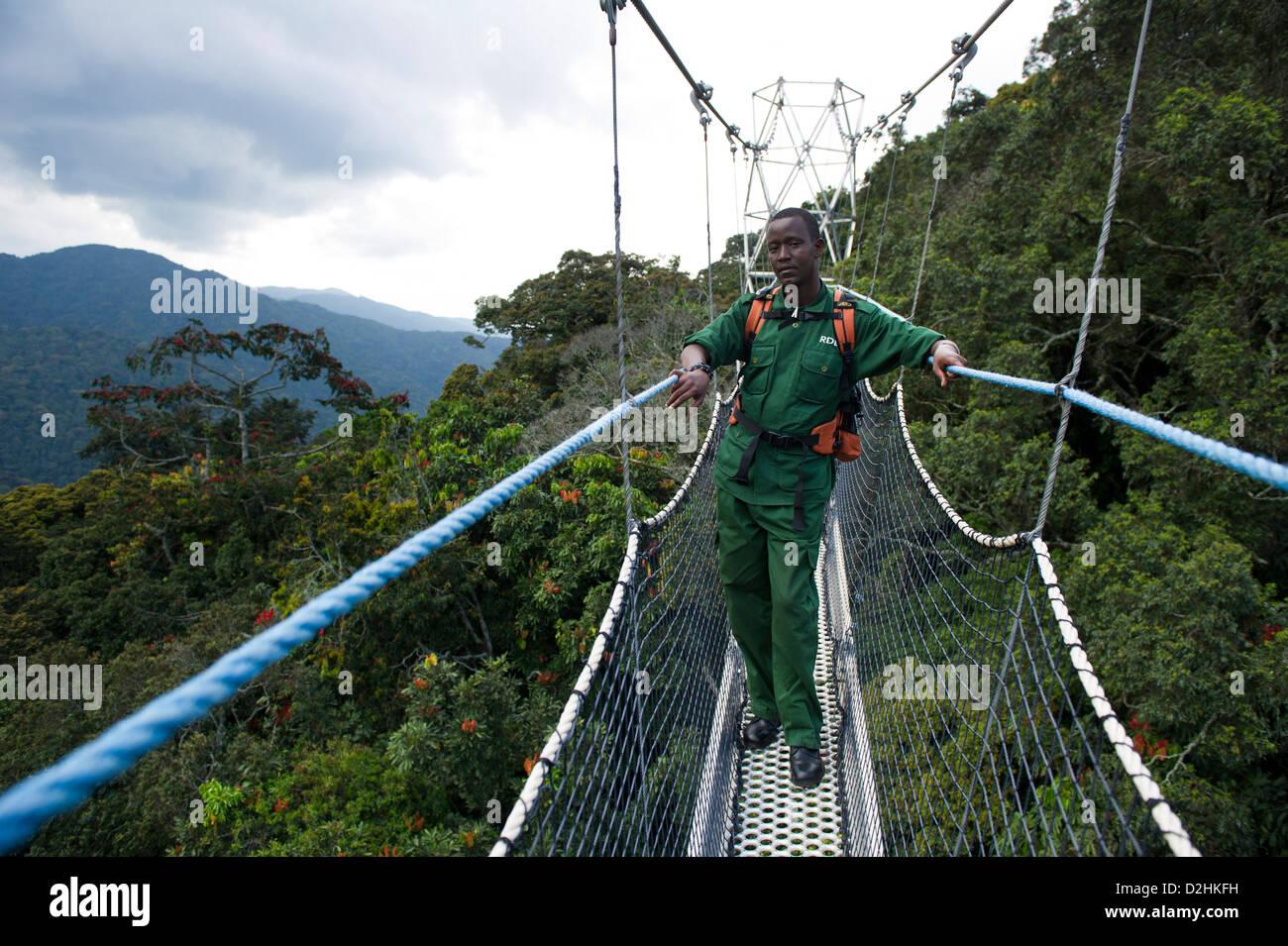 Nyungwe Canopy Walk, Nyungwe Forest National Park, Rwanda Stock Photo