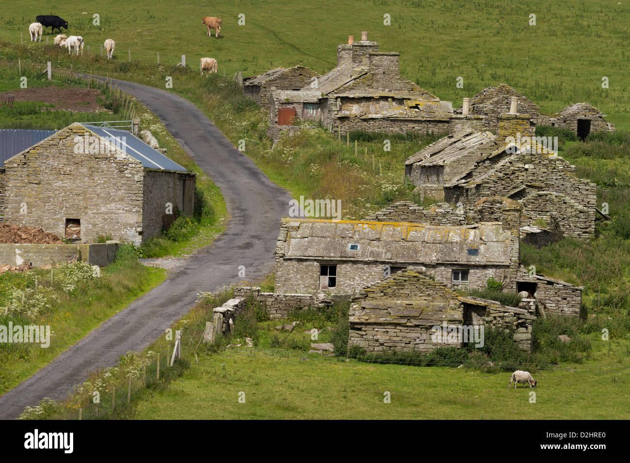 Abandoned village, Orkney Islands - Stock Image