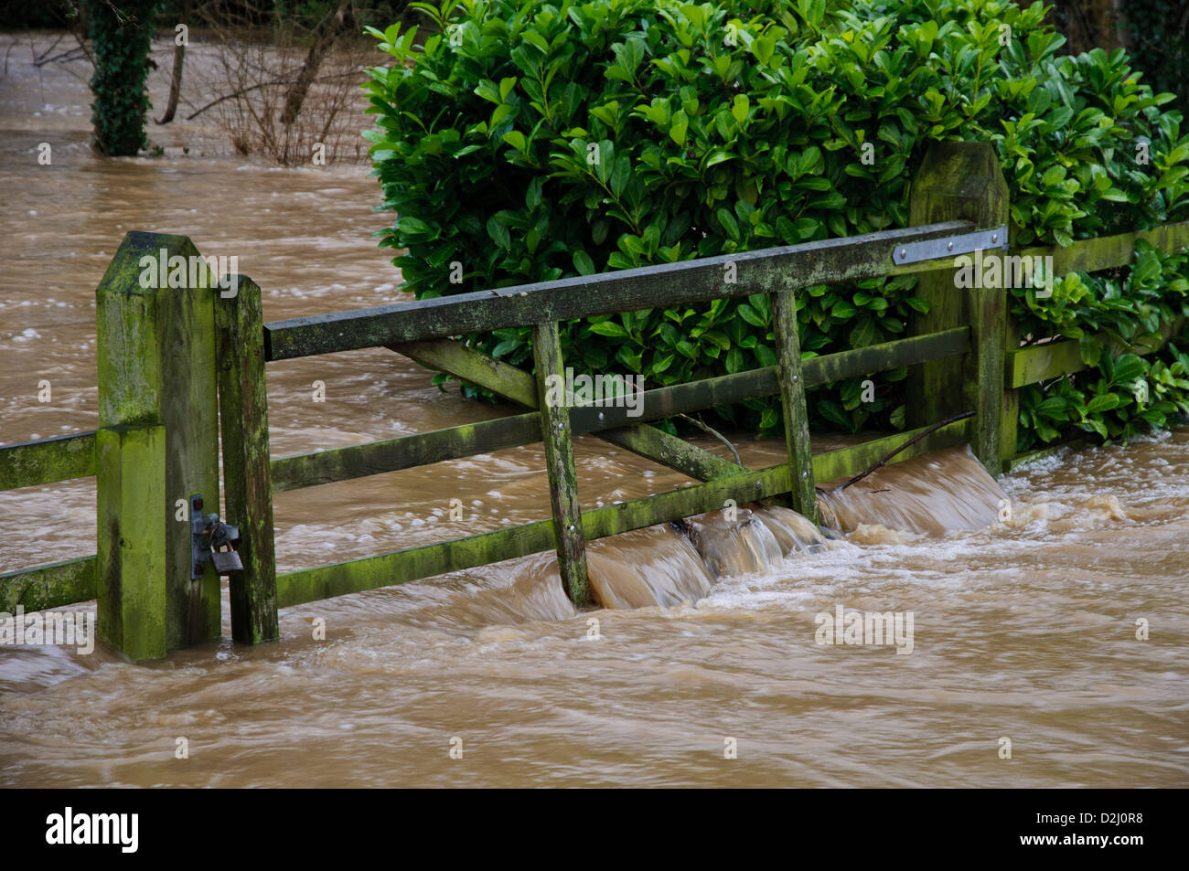 flood waters from Cod Beck, Thirsk, which has burst its