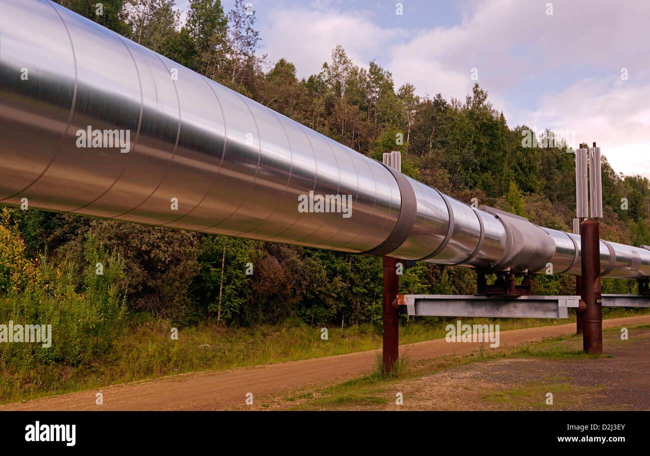 Trans Alaska Oil Pipeline photographed at Fairbanks Alaska - Stock Image