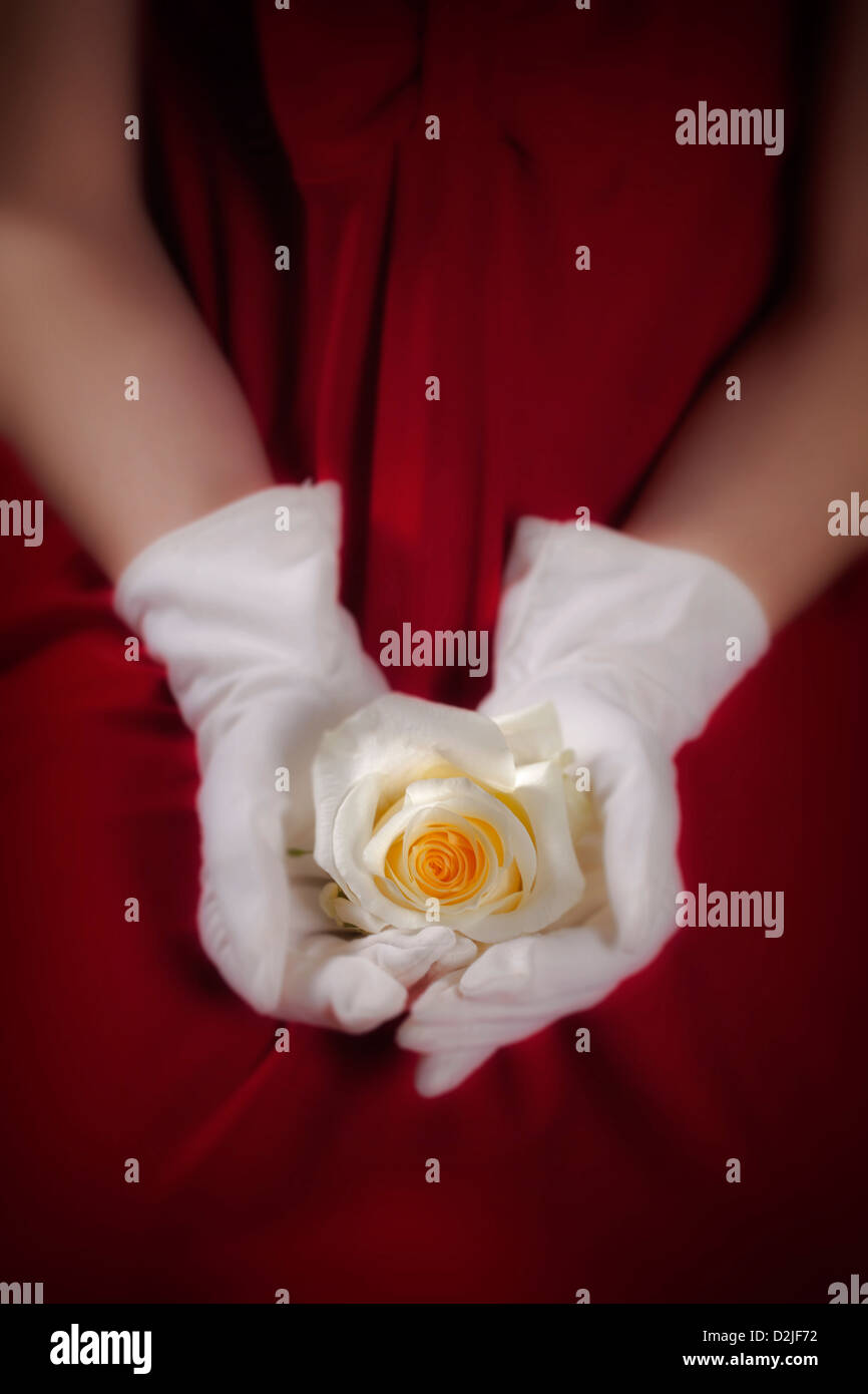 a woman in a red dress with white gloves is holding a white rose on her lap - Stock Image