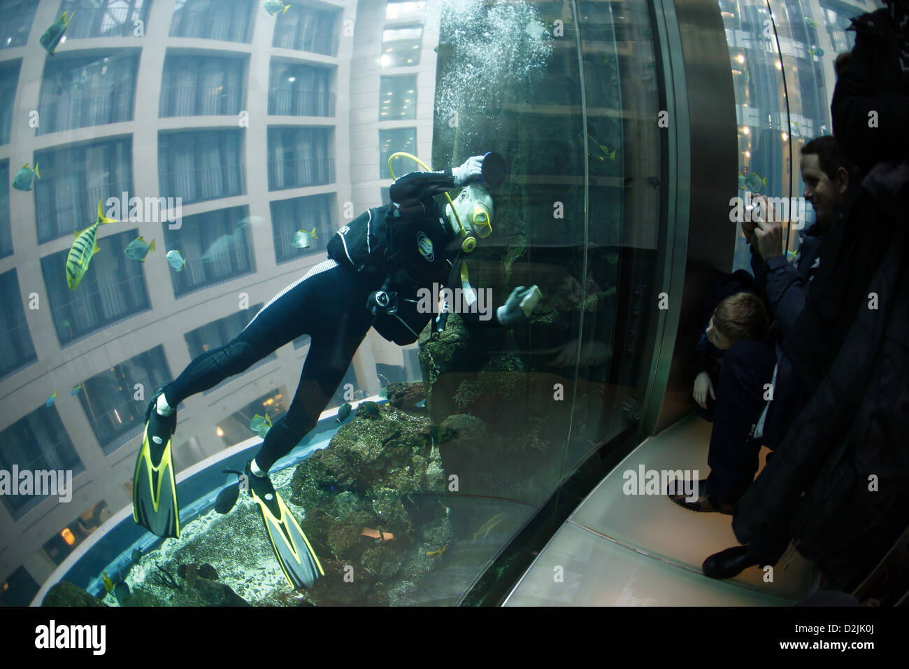 Berlin, Germany, in divers Aquadom the Sealife photographed from the elevator - Stock Image