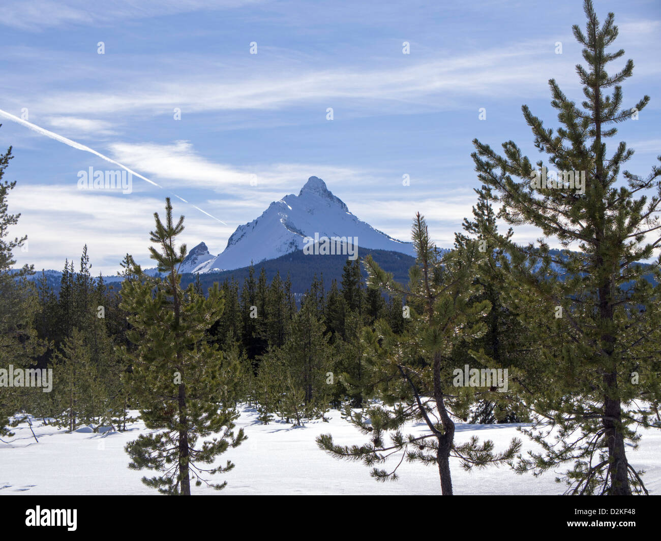 View of Mt. Washington from the South Loop of Ray Benson Sno-Park near Santiam Pass, Oregon, U.S.A. - Stock Image