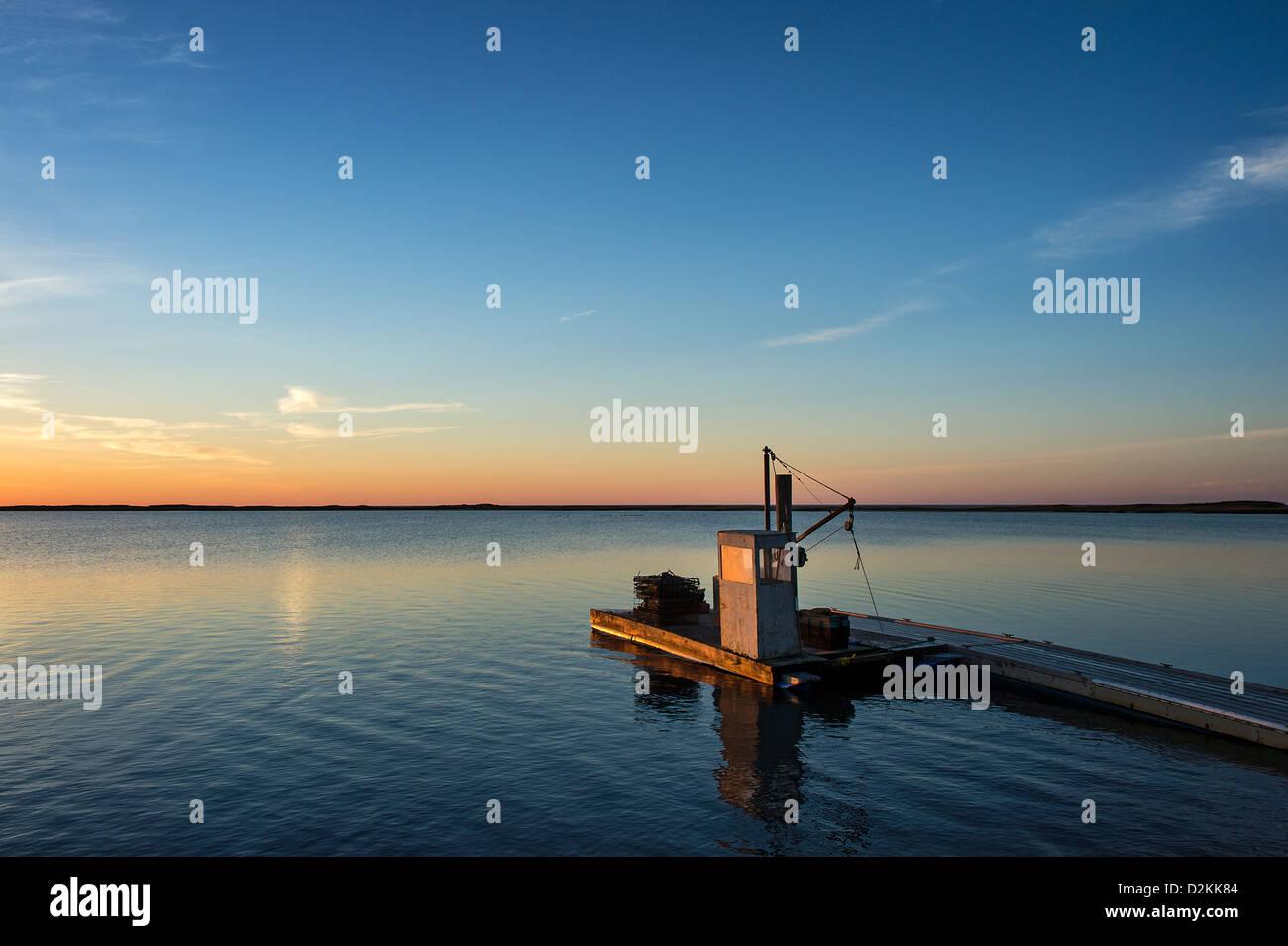 Floating dock at sunrise, Crackatuxet Cove, South Beach, Martha's Vineyard, Massachusetts, USA - Stock Image