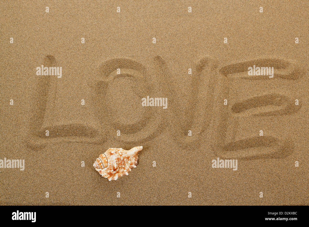 love message with seashell written in sand - Stock Image