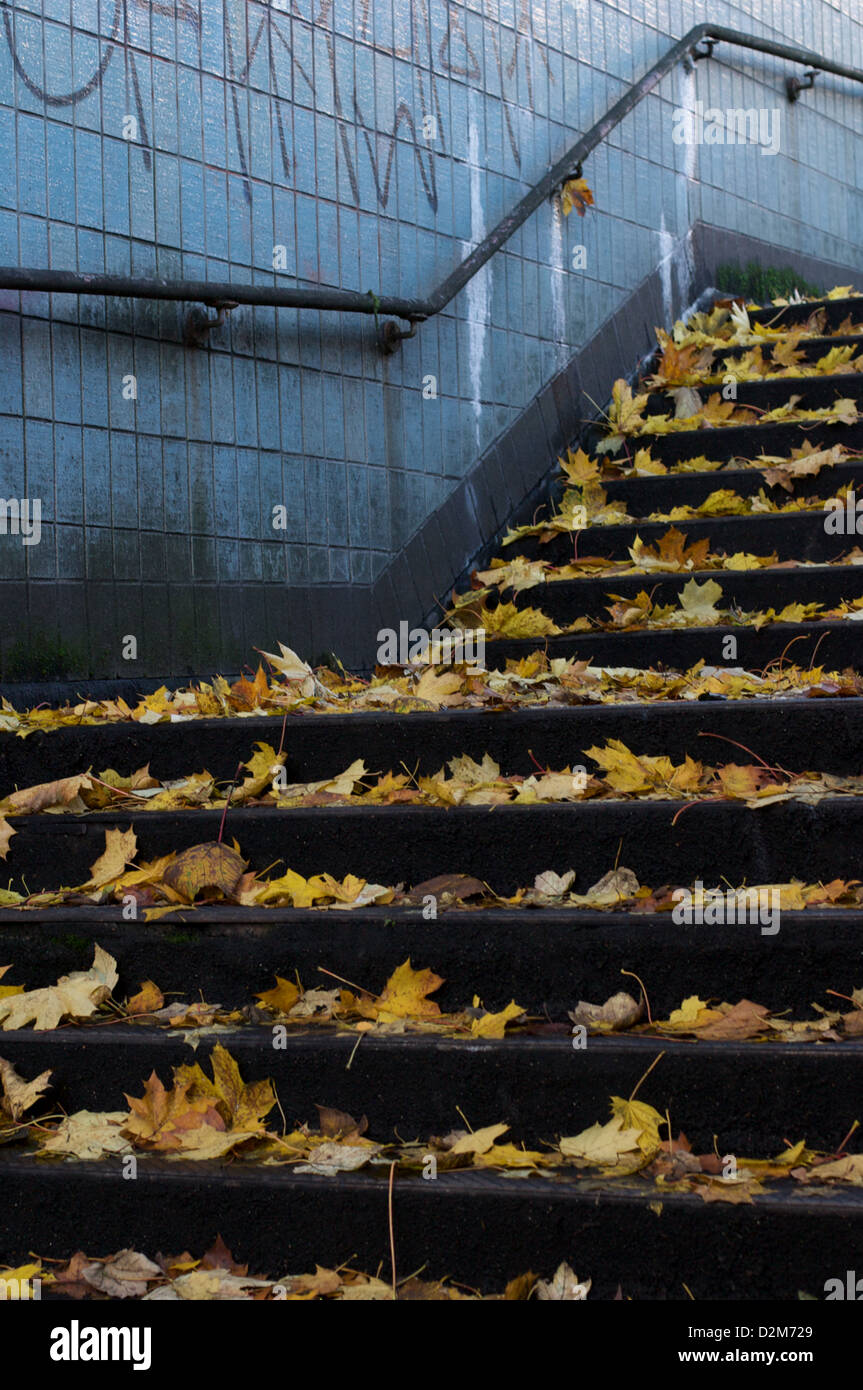 Steps of one of the Hulme subways covered in autumn leaves. The subway allows pedestrians to cross under the Mancunian - Stock Image