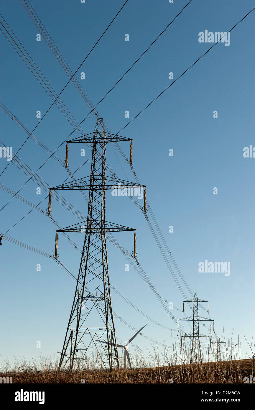 Where can I buy a pylon for home 9