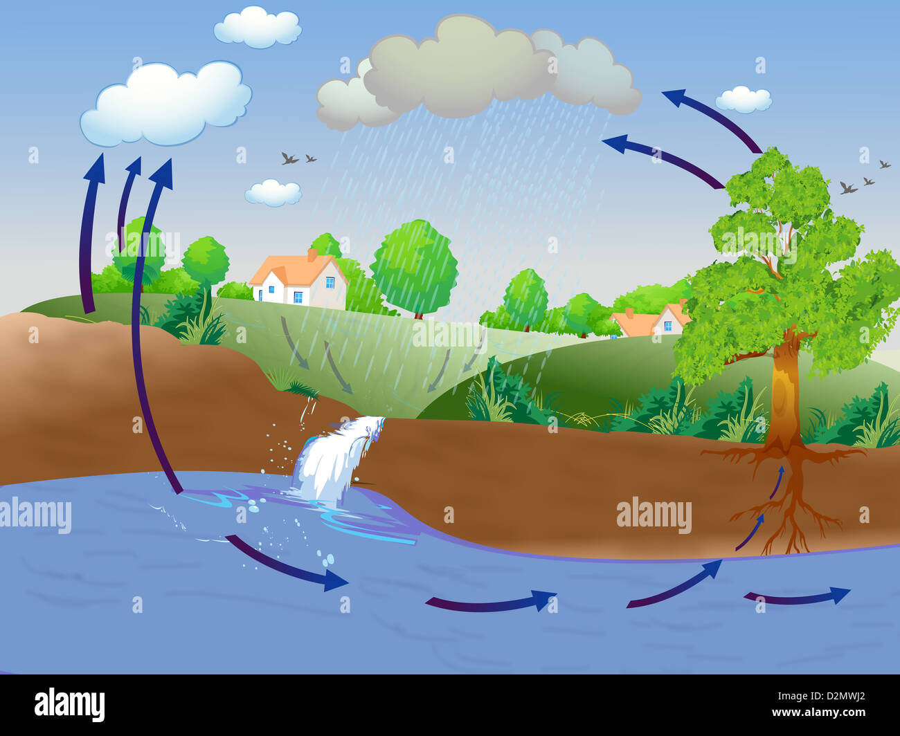 Illustration showing water cycle - Stock Image