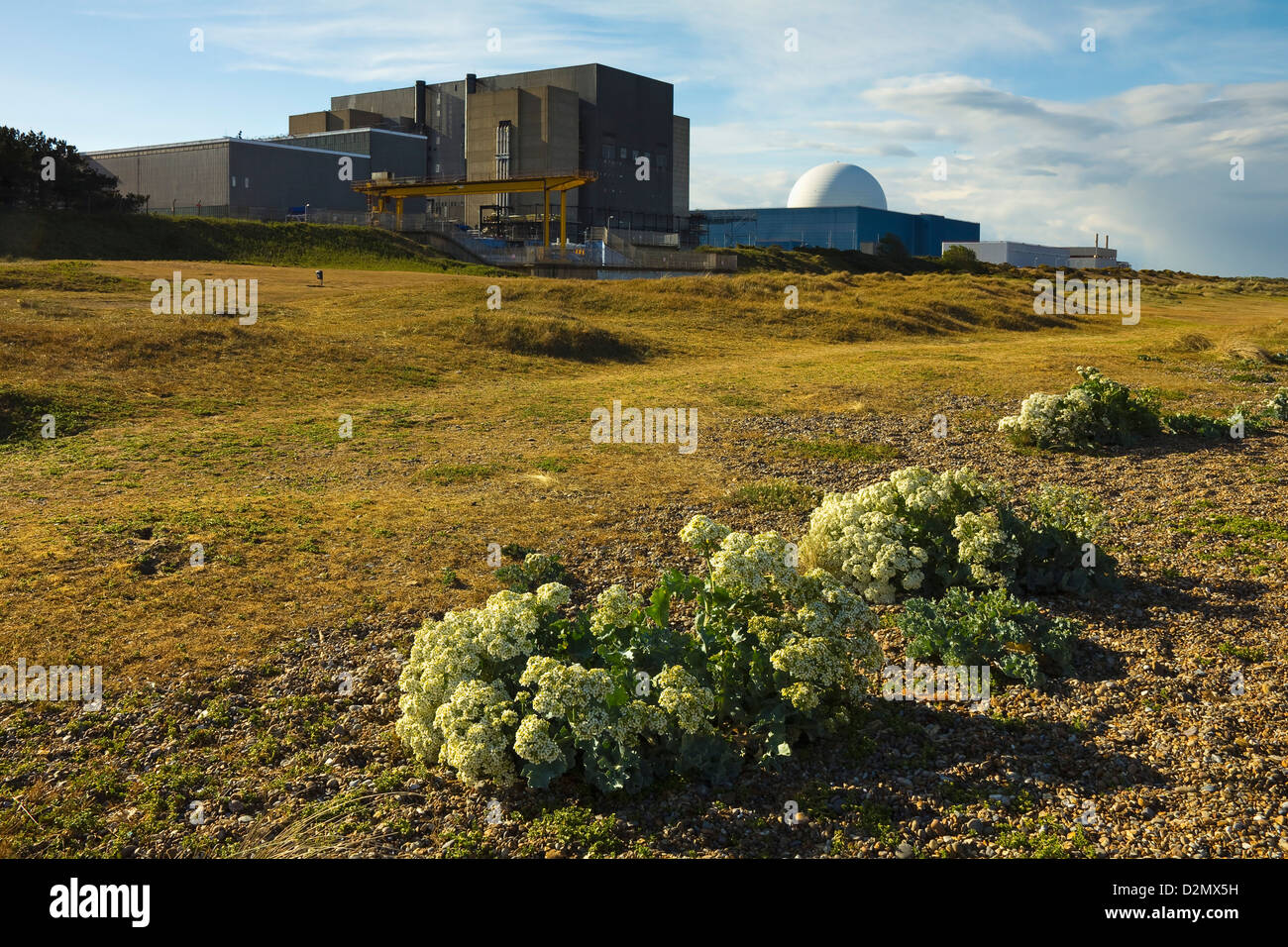 Sizewell A Magnox nuclear power station (left, now closed) & newer B with pressurised water reactor; Sizewell, - Stock Image