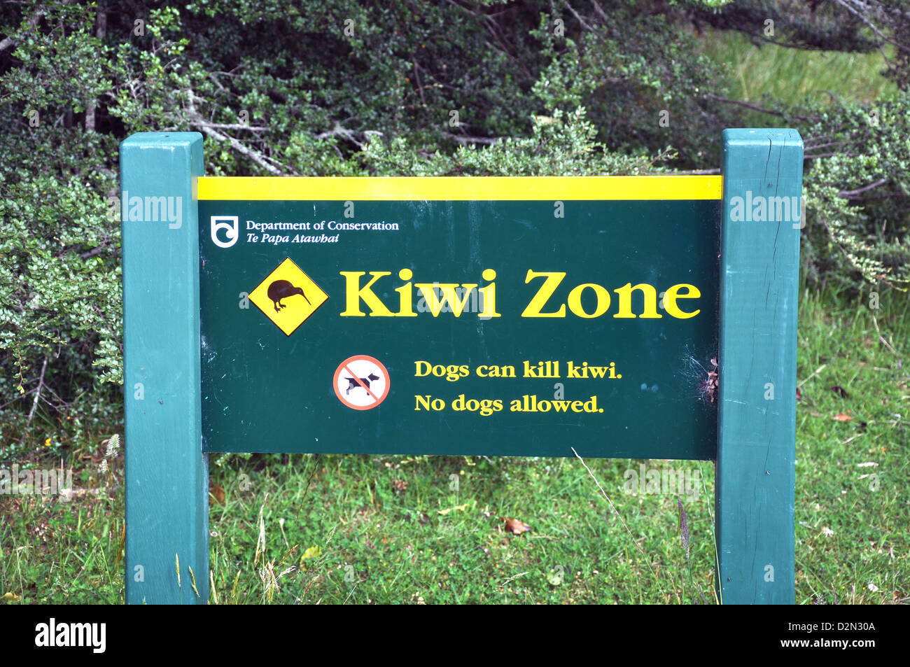 Kiwi zone caution sign from the department of conservation, no dogs allowed - South island, New Zealand - Stock Image