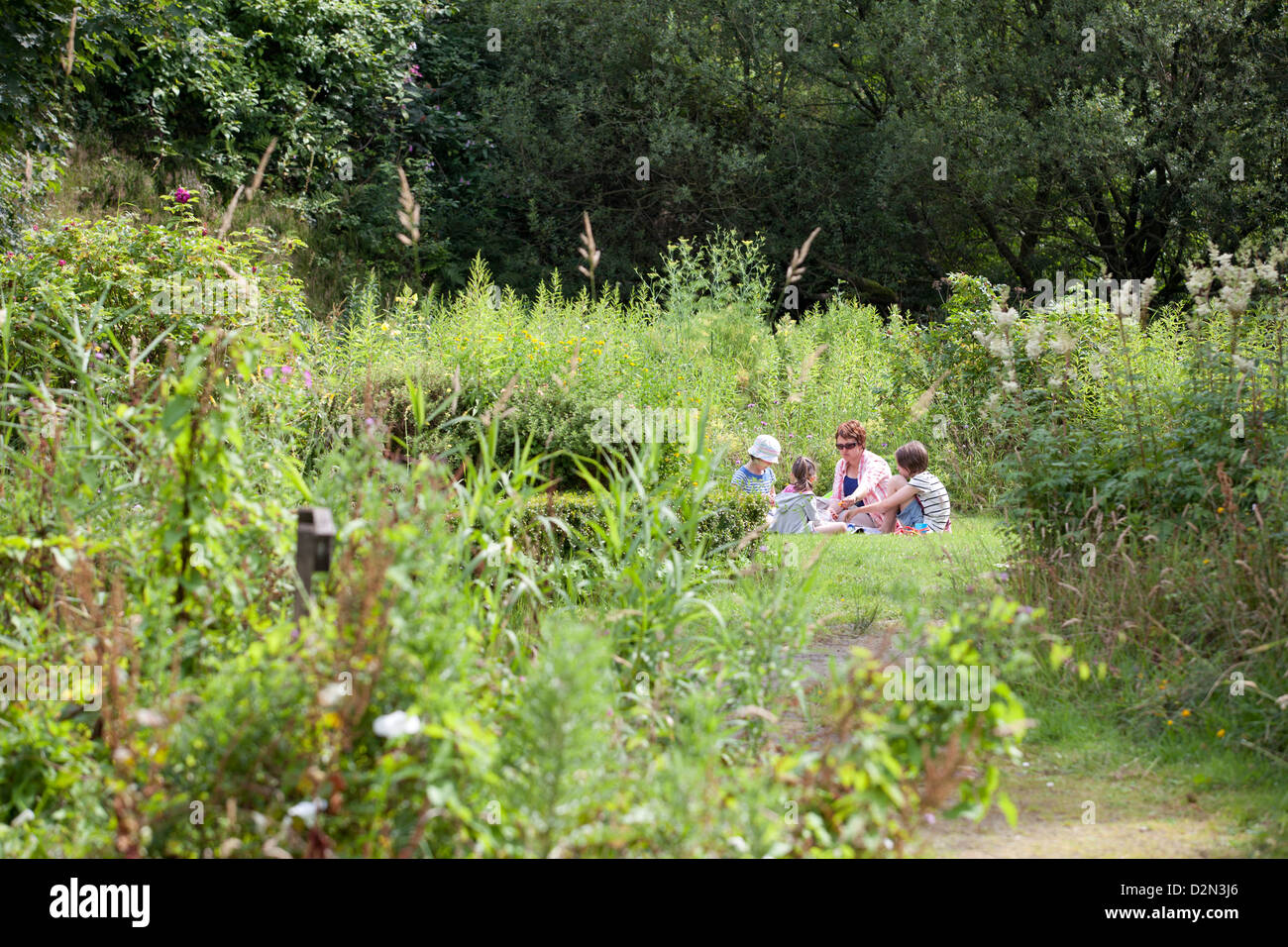 August 2012 Brownbhill Countryside Centre - Pix in Garden - Stock Image