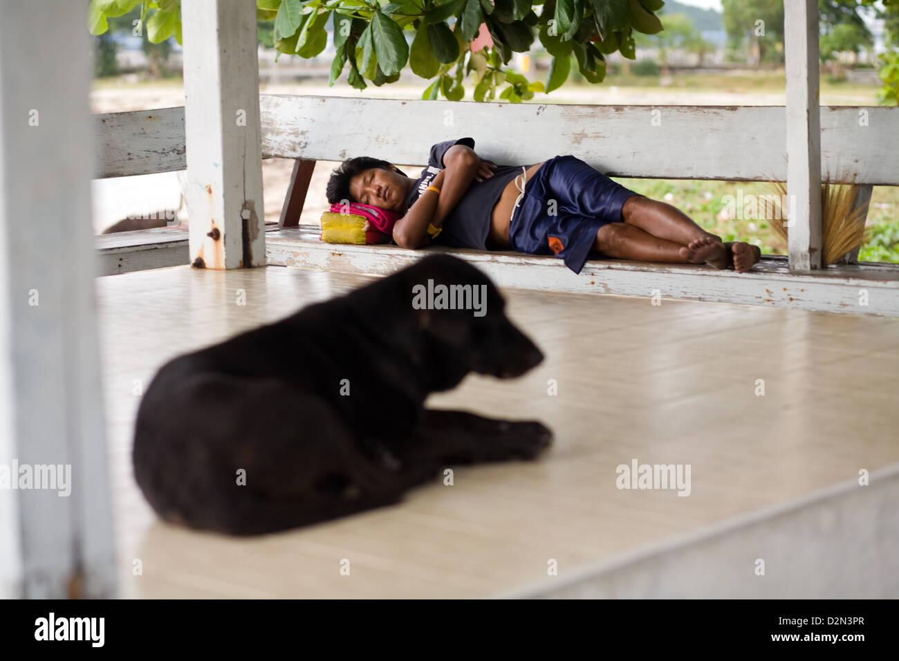 A dog and a man asleep in Thong Sala , Koh Phangan , Thailand - Stock Image