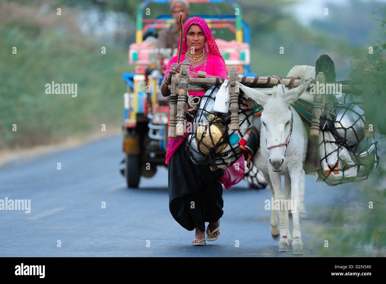 A nomadic woman travelling with her donkey, Gujarat, India, Asia - Stock Image