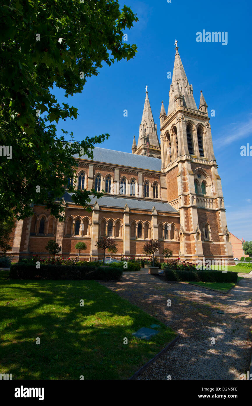 Anglican St. Peters Cathedral, Adelaide, South Australia, Australia, Pacific - Stock Image