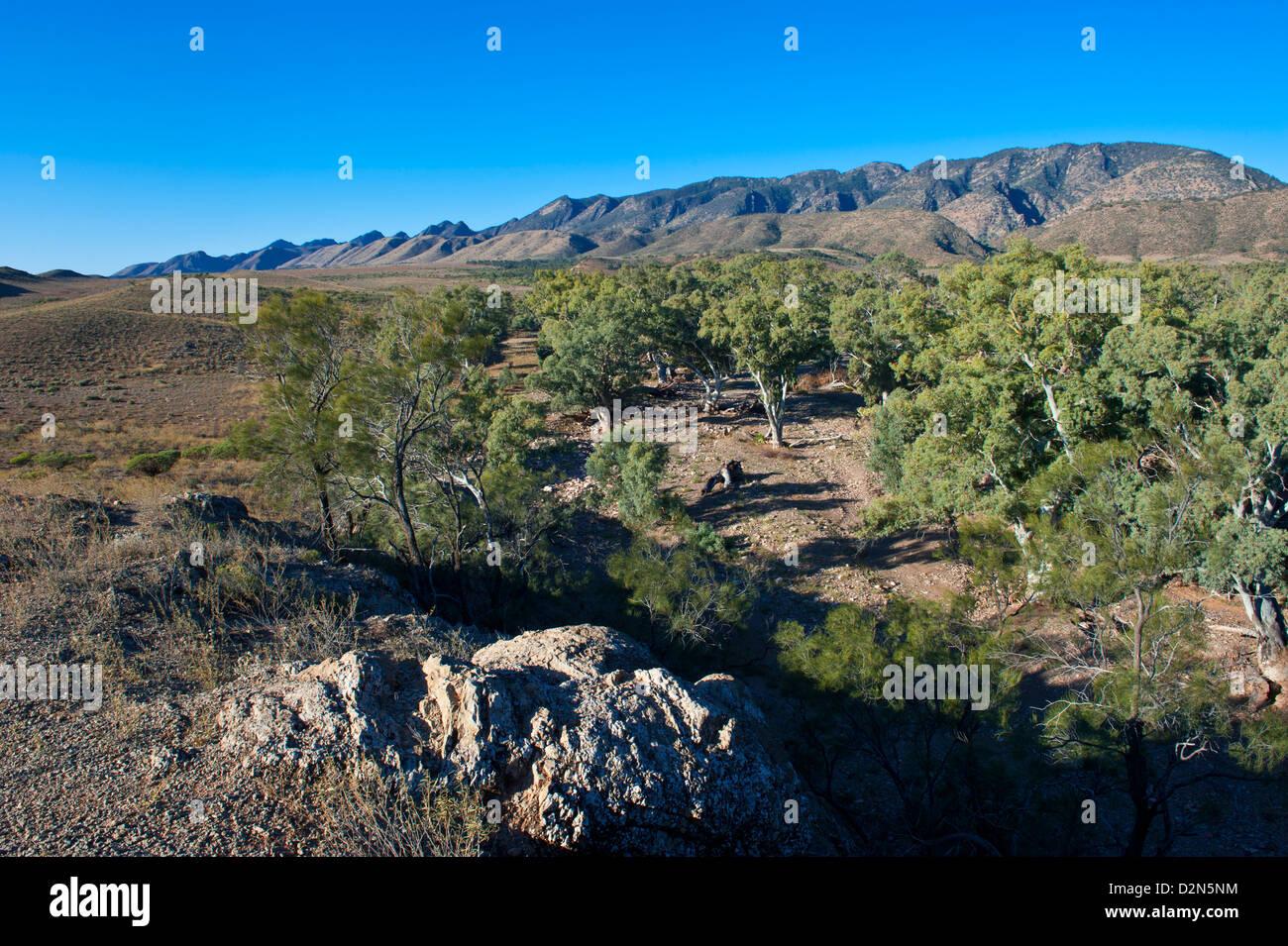 Flinders Ranges National Park, South Australia, Australia, Pacific Stock Photo