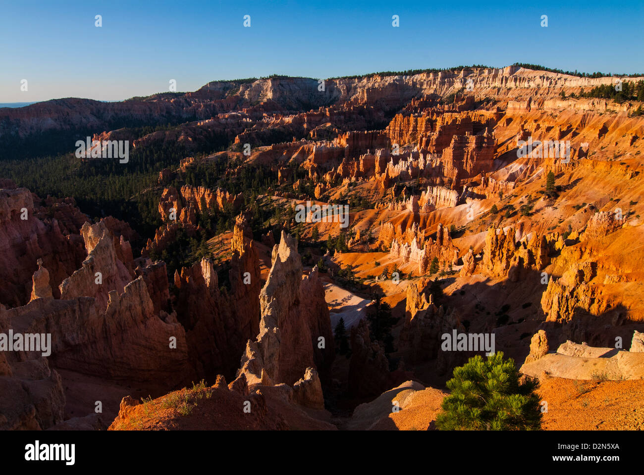View over the pinnacles in the beautiful rock formations of Bryce Canyon National Park, Utah, USA - Stock Image