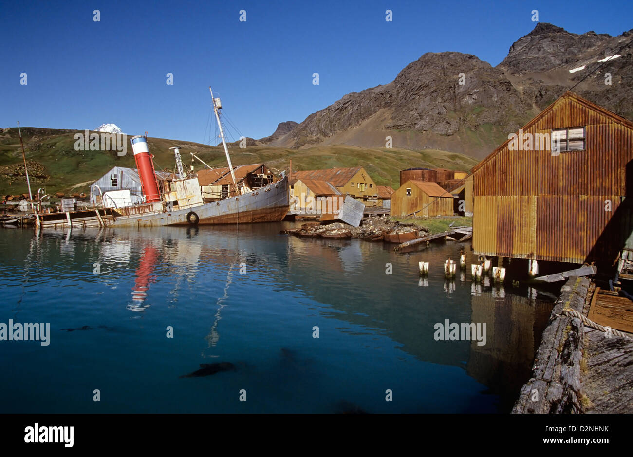 Grytviken's last whale catcher, Petrel, rusts away at a jetty, South Georgia Island, Antarctica - Stock Image