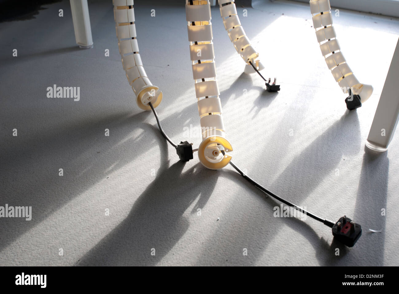 Shared Office Cable Management System With Four Unplugged Plugs Lying On  Office Floor With Morning Sun
