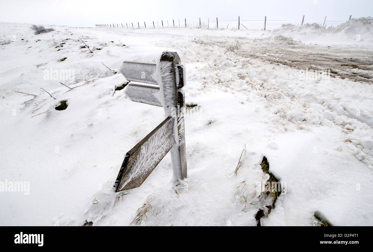 A wind snow frosted footpath sign in Winter next to the A39, Exmoor between Porlock and Lynton, UK - Stock Image