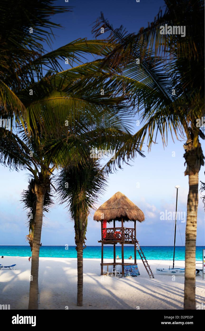 Hut on the beach amongst palm trees - Stock Image