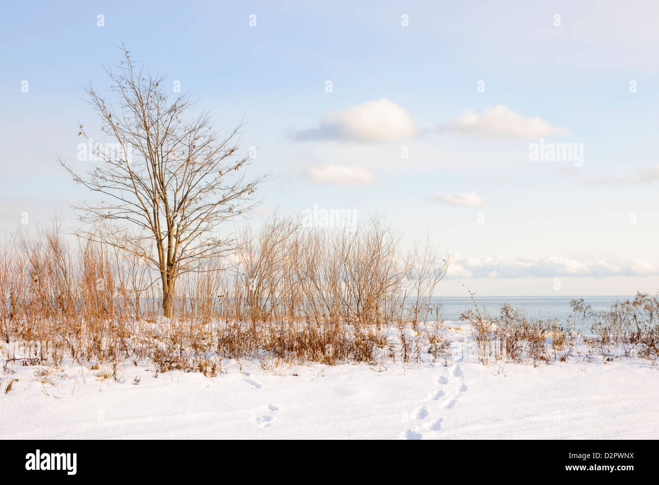 Snowy shore of lake Ontario in Sylvan park Toronto - Stock Image