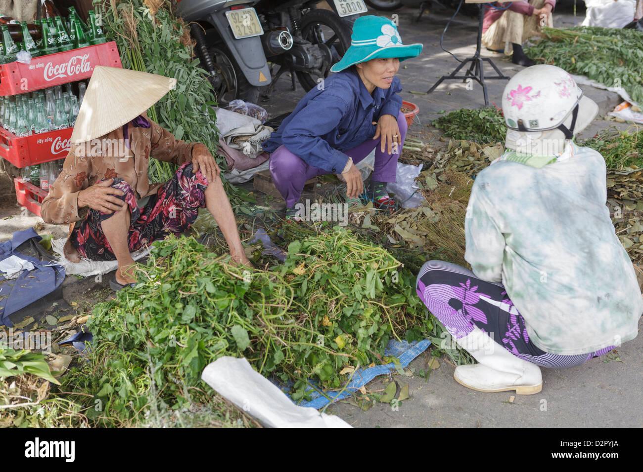 Women sort through their produce at Hoi An's riverside market, Hoi An, Vietnam, Indochina, Southeast Asia, Asia - Stock Image