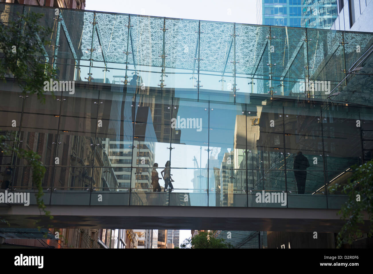 Glass Passageway, Sydney, New South Wales, Australia, Pacific - Stock Image