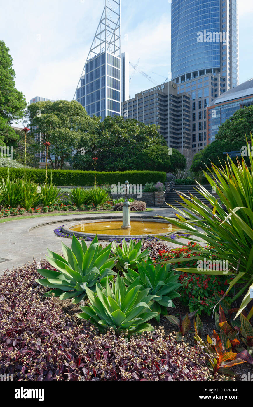 Royal Botanic Gardens, Sydney, New South Wales, Australia, Pacific - Stock Image