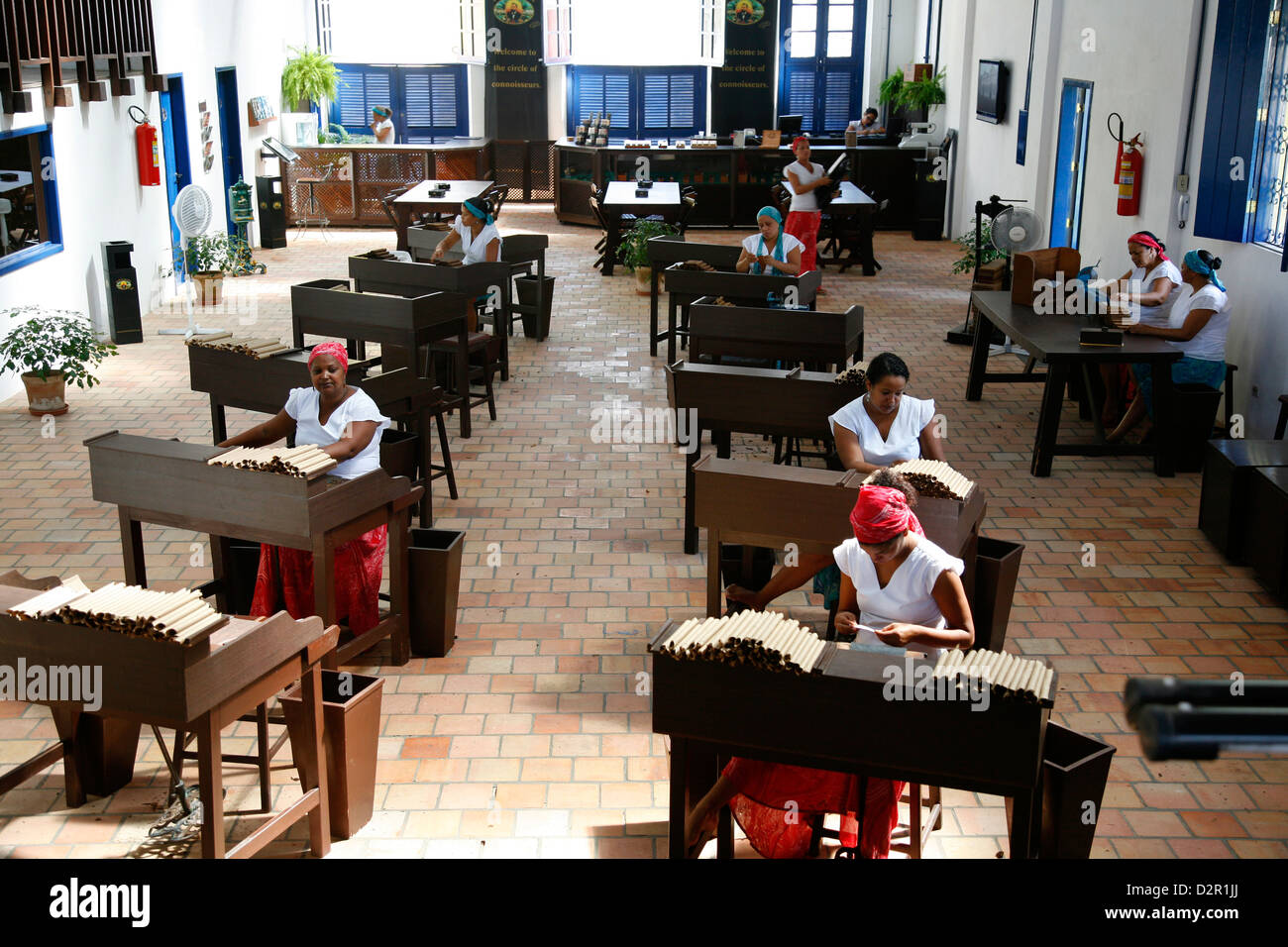 Women making cigars at the Dannemann factory in Sao Felix, Bahia, Brazil, South America - Stock Image
