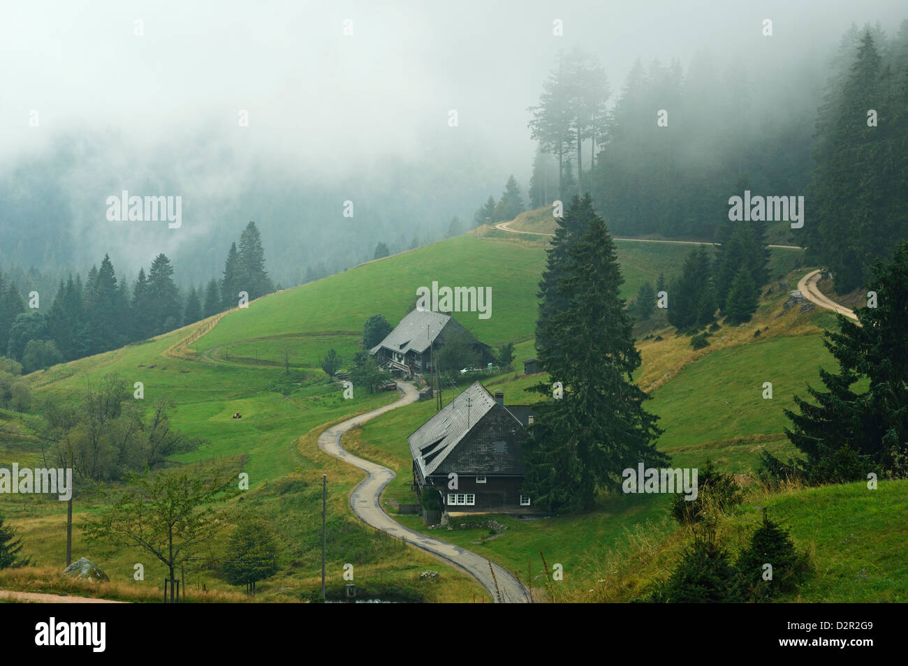 Farmhouses in fog, Muchenland, Black Forest, Baden-Wurttemberg, Germany, Europe - Stock Image