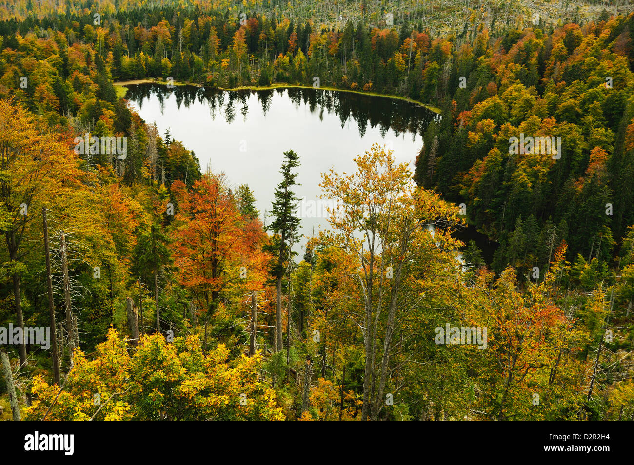 Rachelsee (Rachel Lake), Grosser Rachel, Bavarian Forest National Park, Bavarian Forest, Bavaria, Germany, Europe Stock Photo