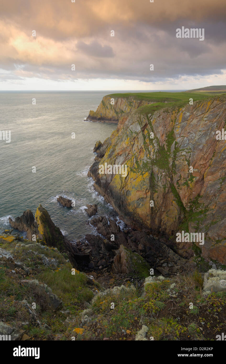Mull of Galloway, Scotland's most southerly point, Rhins of Galloway, Dumfries and Galloway, Scotland, United - Stock Image