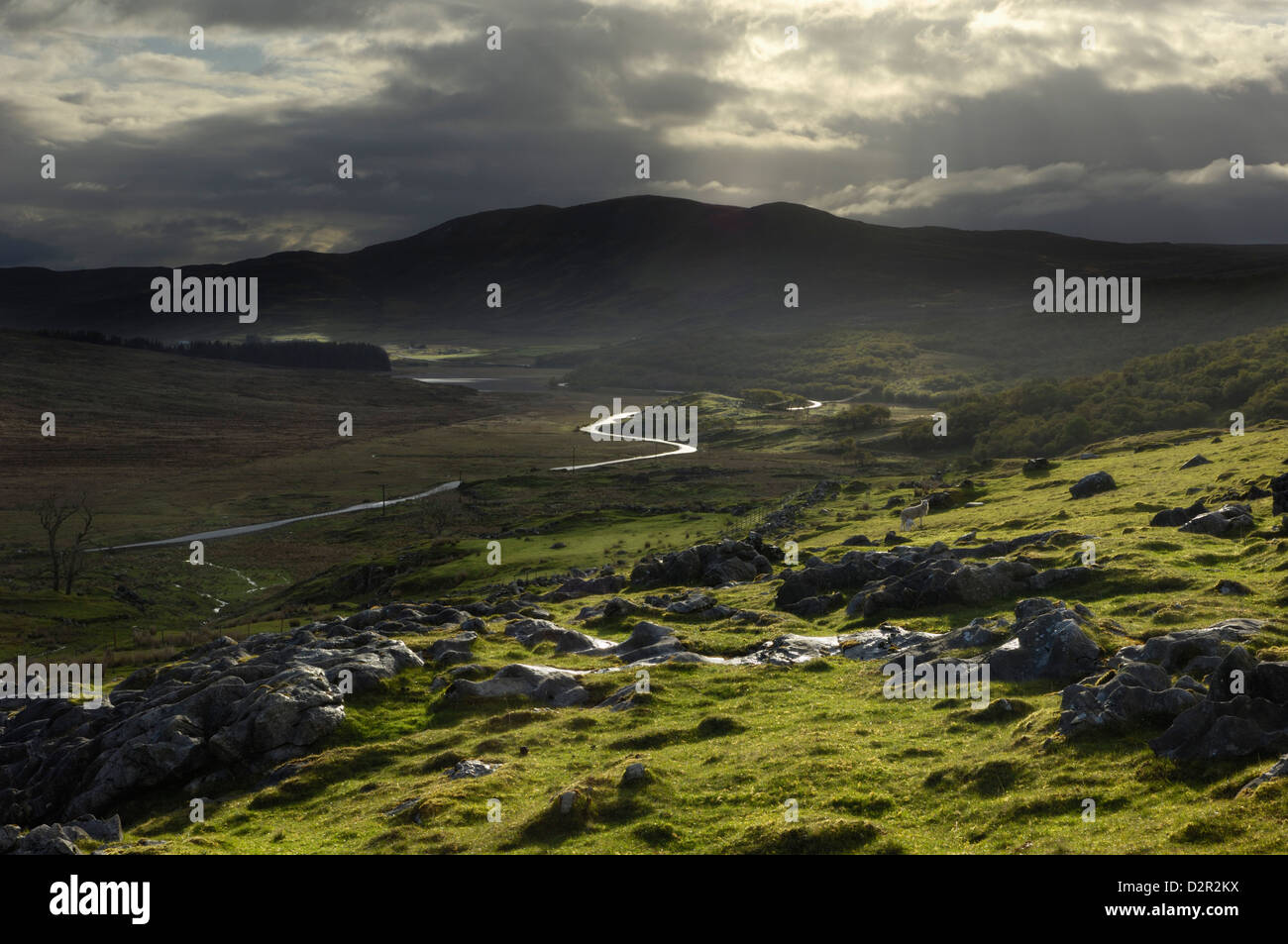 Road from Broadford to Elgol, Isle of Skye, Inner Hebrides, Scotland, United Kingdom, Europe - Stock Image