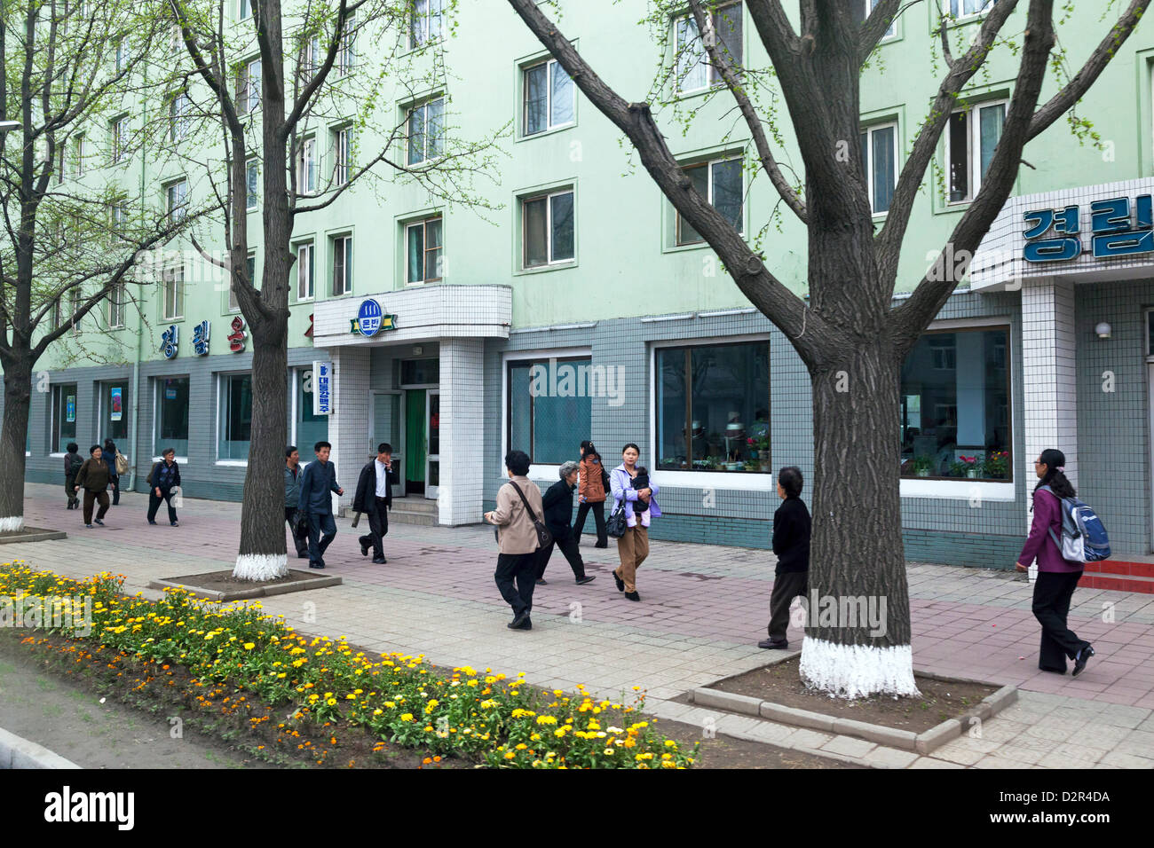 Typical city street scene, Pyongyang, Democratic People's Republic of Korea (DPRK), North Korea, Asia - Stock Image
