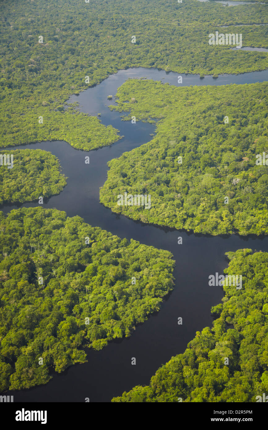 Aerial view of Amazon rainforest and tributary of the Rio Negro, Manaus, Amazonas, Brazil, South America - Stock Image