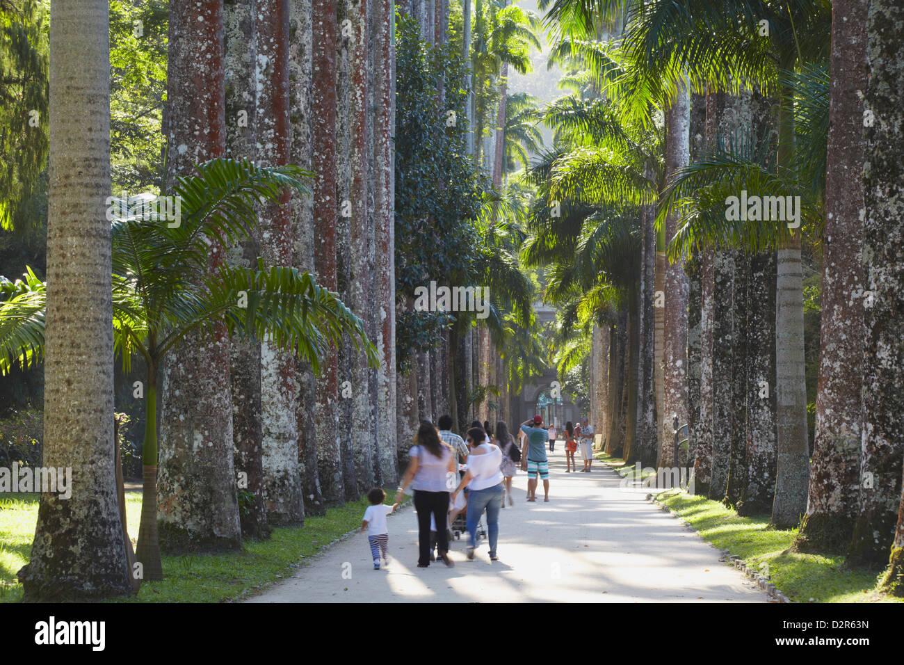 People at Botanical Gardens (Jardim Botanico), Rio de Janeiro, Brazil, South America - Stock Image