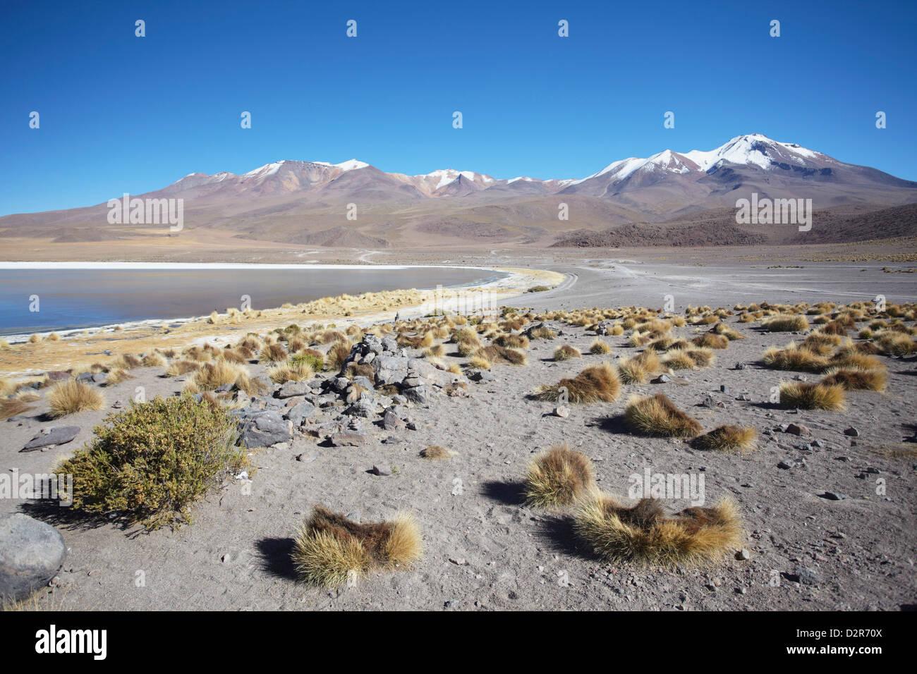 Landscape of Laguna Canapa on Altiplano, Potosi Department, Bolivia, South America - Stock Image