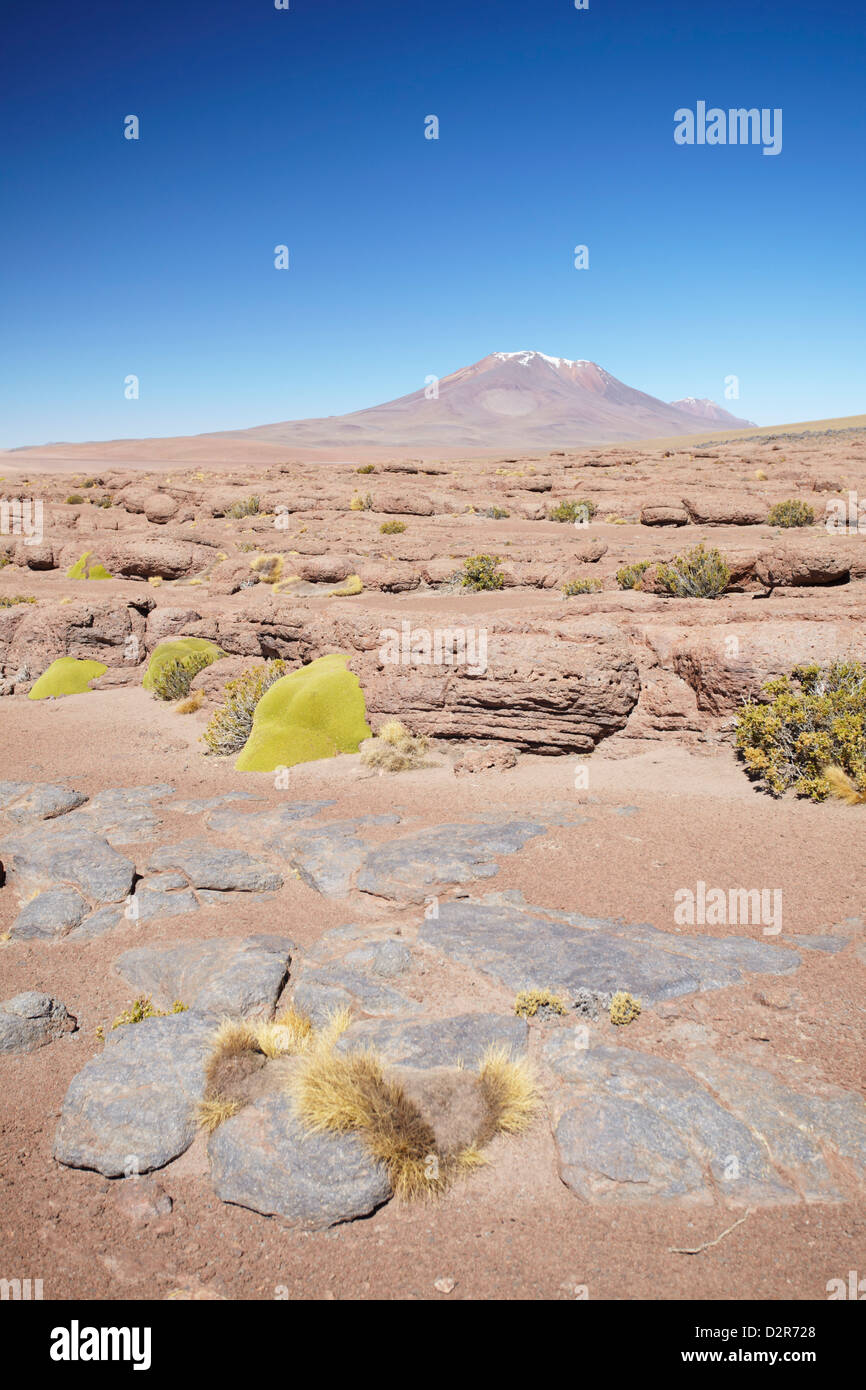 Landscape of Altiplano, Potosi Department, Bolivia, South America - Stock Image