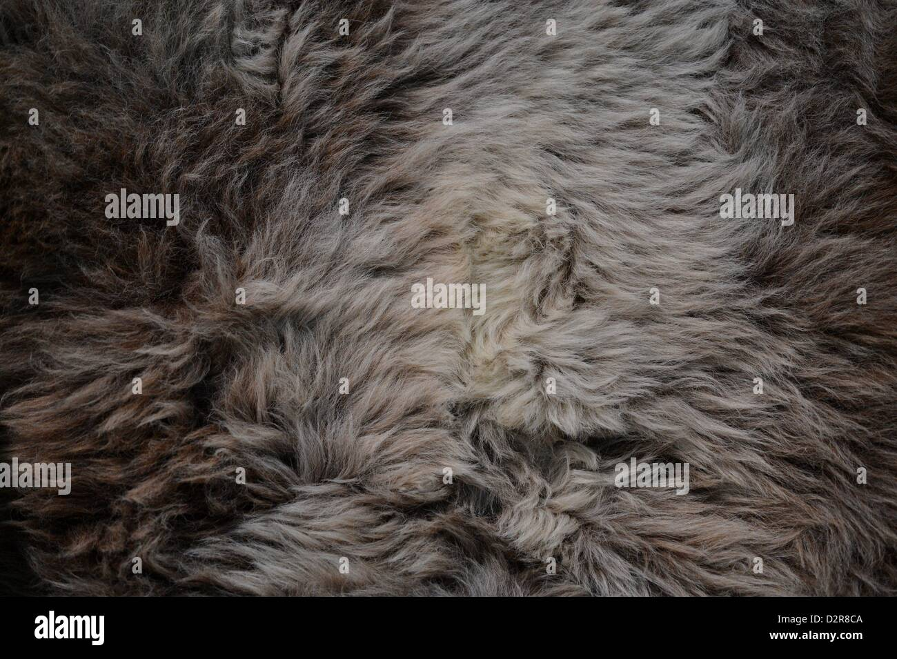 coat. Photo: Frank May - Stock Image