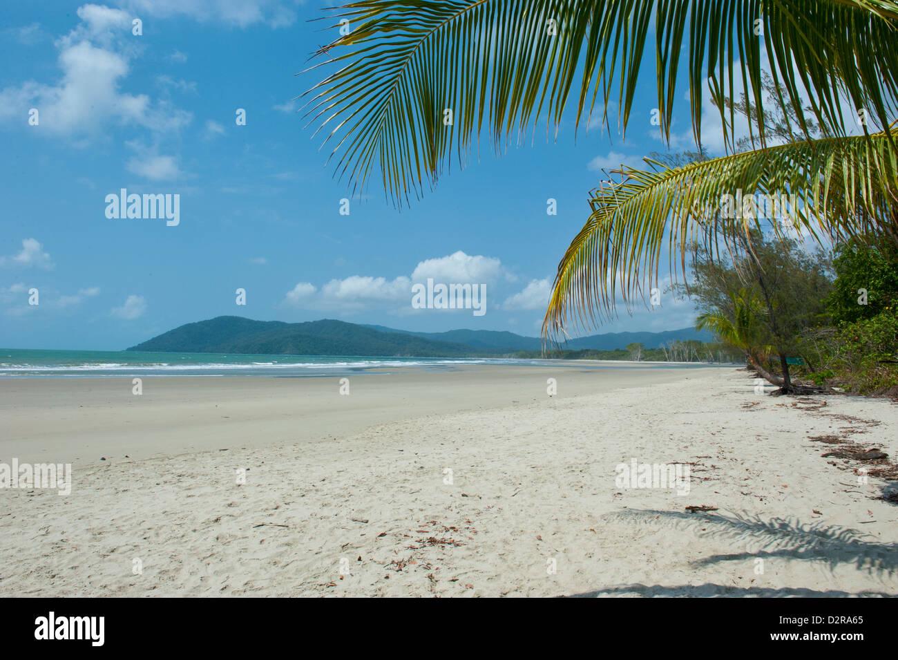 Beautiful sand beach, Cape Tribulation, Queensland, Australia, Pacific - Stock Image