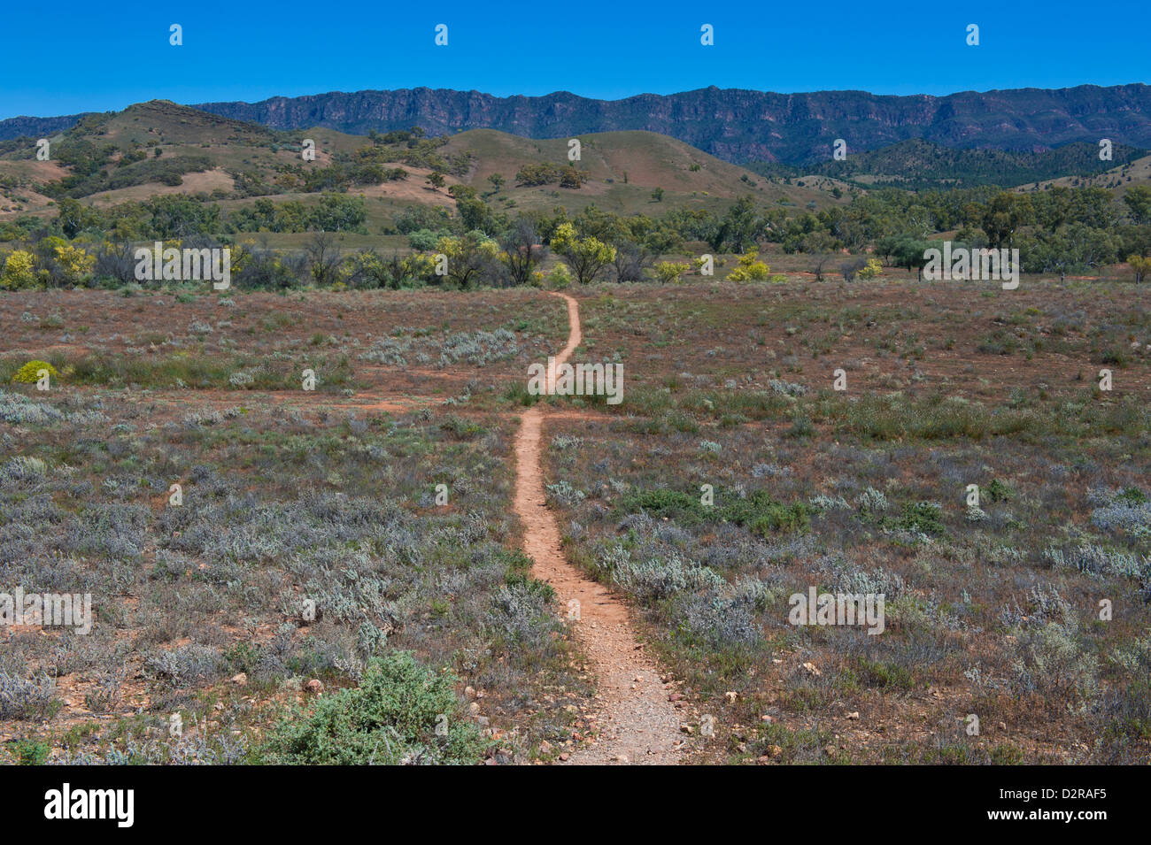 Dusty road leading in the Flinders National Park, South Australia, Australia, Pacific - Stock Image