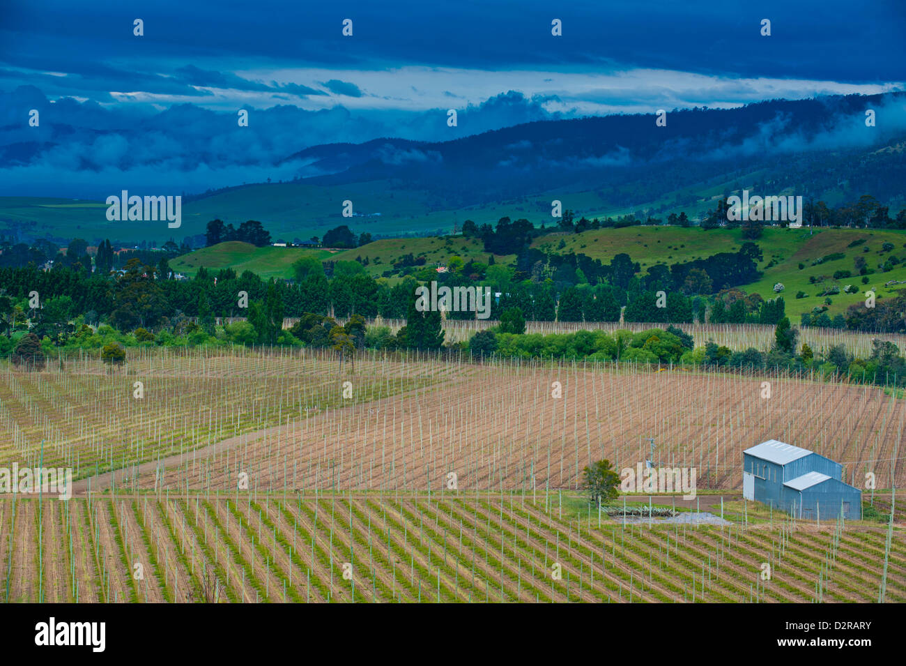 Little house in a agricultural field in Western Tasmania, Australia, Pacific - Stock Image