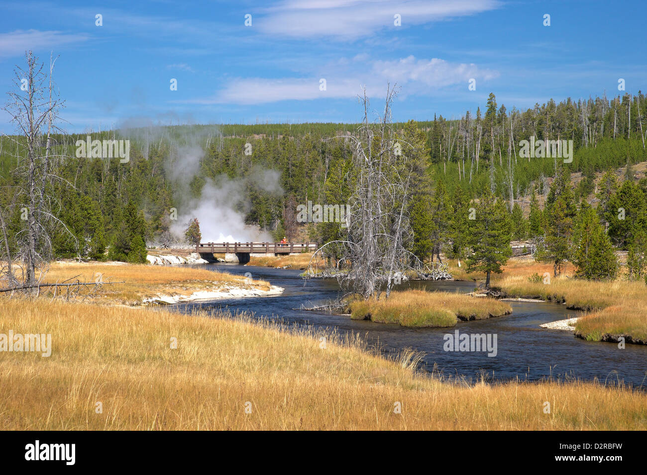 Oblong Geyser, Upper Geyser Basin, Yellowstone National Park, Wyoming, USA - Stock Image