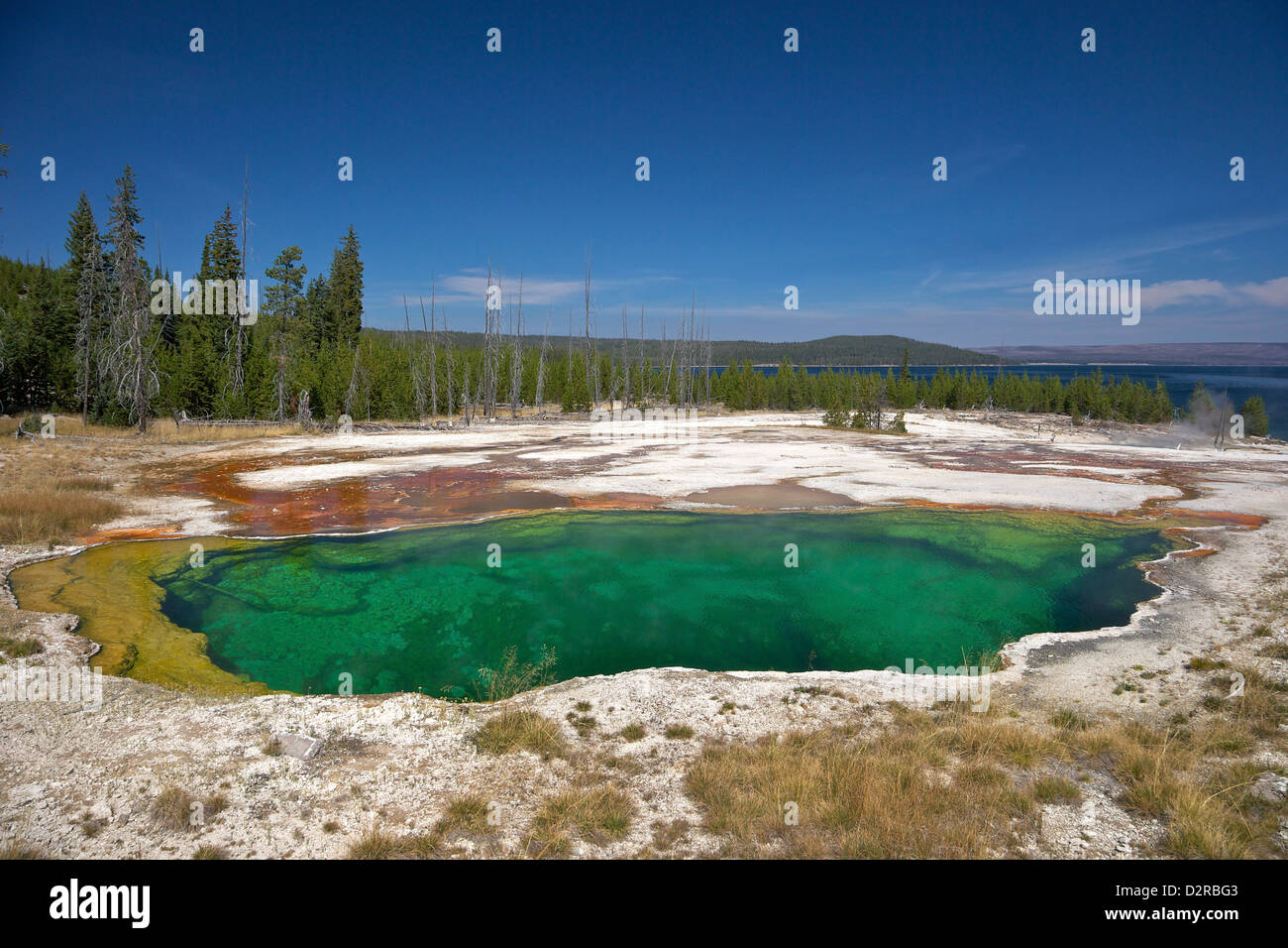Abyss Pool, West Thumb Geyser Basin, Yellowstone National Park, Wyoming, USA - Stock Image