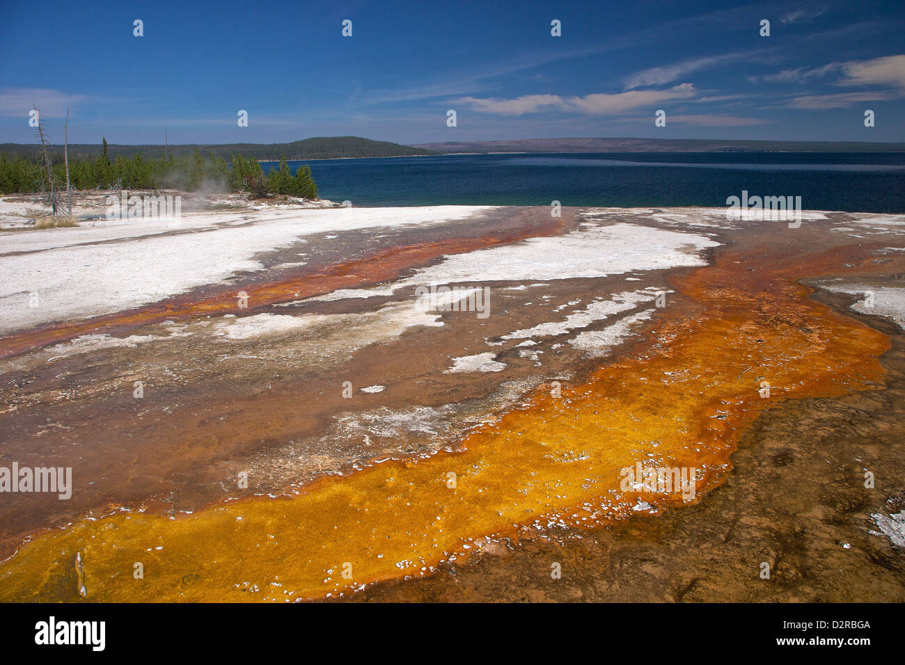 Run off area near Black Pool Spring, West Thumb Geyser Basin, Yellowstone National Park, Wyoming, USA - Stock Image