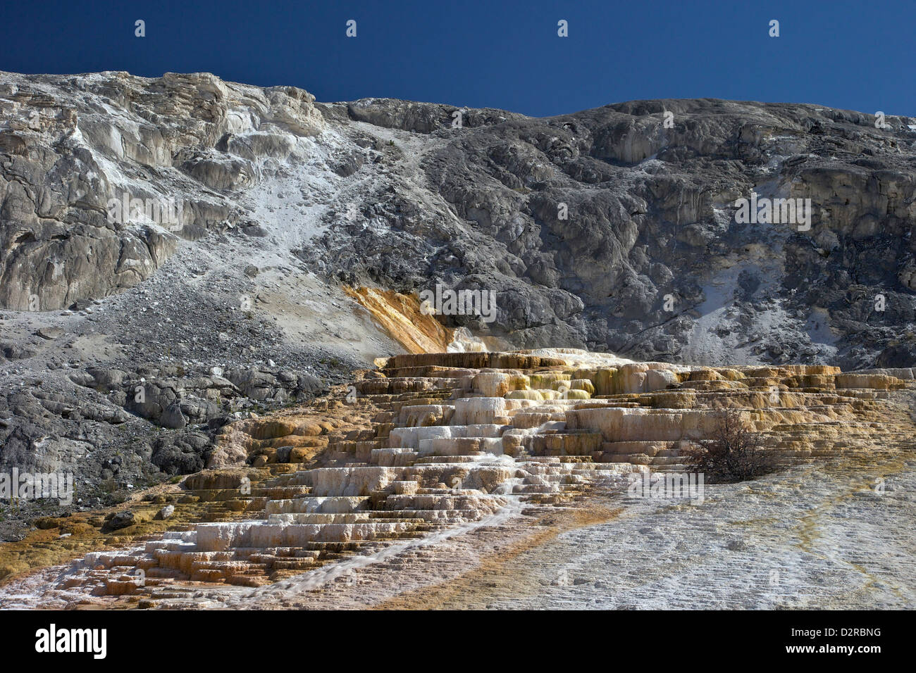 Mound Terrace, Mammoth Hot Springs, Yellowstone National Park, Wyoming, USA - Stock Image